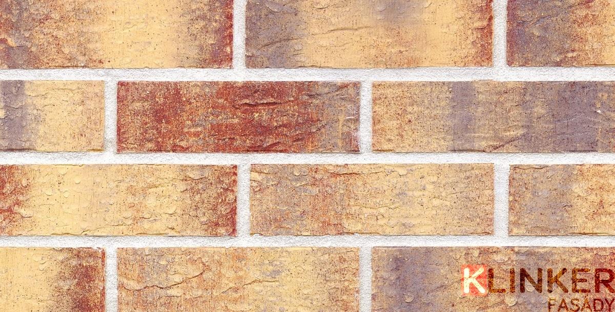 NFP.Rainbow Brick HF15